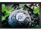 Картина №2: бильярдный шар в трещинах